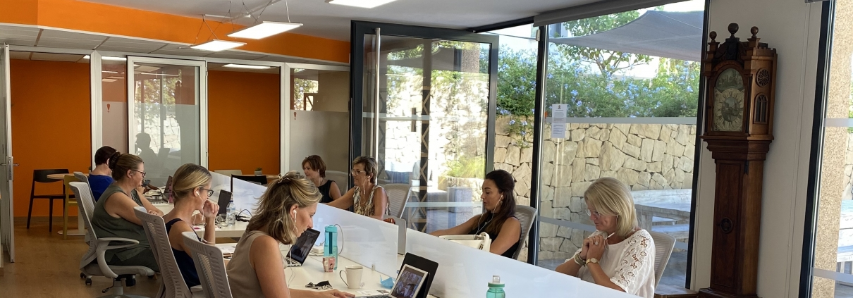 Co-working of flexwerken in het business centrum spanje